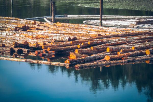 Texada log boom